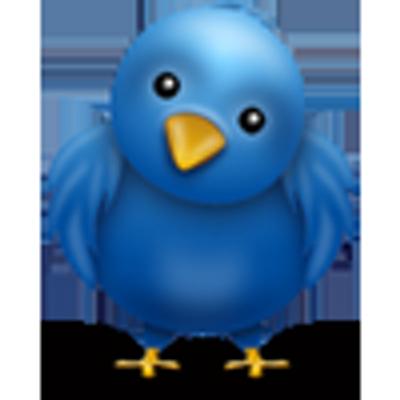 pintinho azul on twitter passarinho não sente frio tá