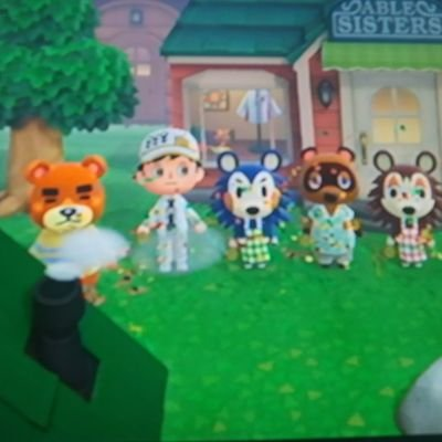Animal Crossing NH Clothes Creator