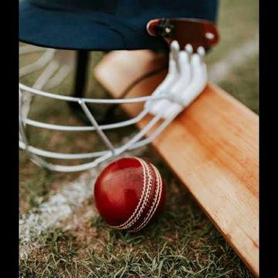 loving_cricket