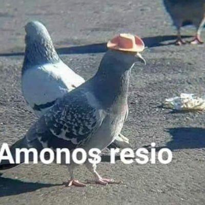 J An No Sé Ni Quien Soy No Sé Lo Que Siento Chajosan2 Twitter