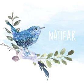 Natieak
