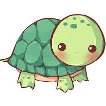Tortoise⁷