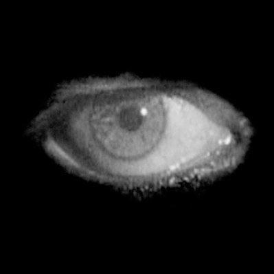 Eyes On Cinema