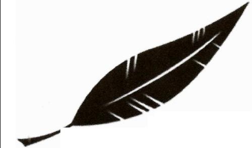 Plume noir clubplumenoir twitter - Plume noire signification ...