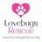 Lovebugs Rescue