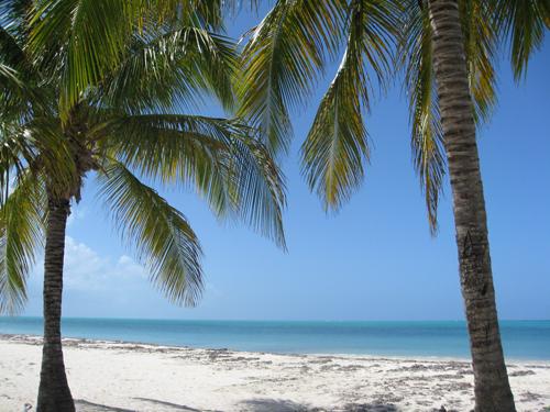 North Beach Barbuda