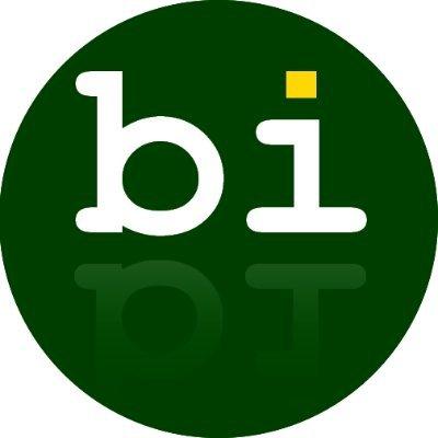 bibisco - novel writing software
