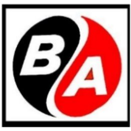 BA INTERNATIONAL MOVING & CARGO COMPANY W.L.L