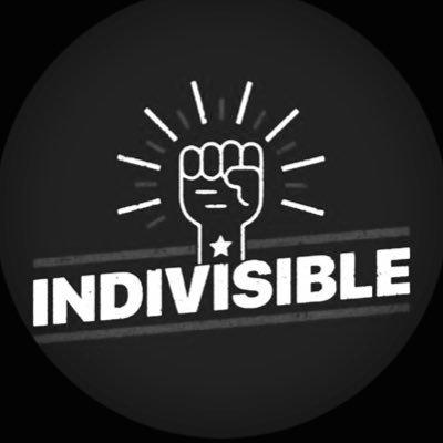 Indivisible Georgia District 10
