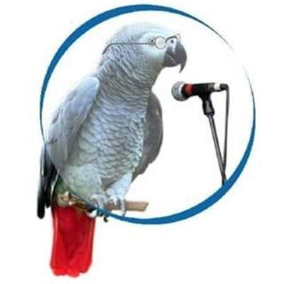 freedom99.5 kaduna radio station official