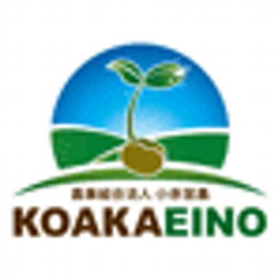 koakaeinou