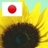 Icon13004683957524 normal