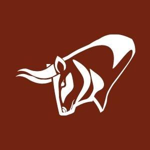 Wiregrass Ranch High School Football