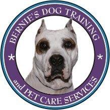 Bernie's Dog Training