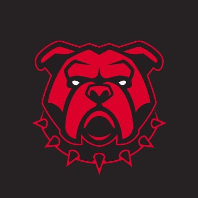 CEO of BullDawg Sports Cards 🐶 🚀 MySlabs: https://t.co/754aG5hluS Ebay: https://t.co/RcOImWN7Xq