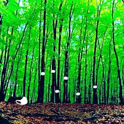臨リハの森🌲リハビリの「なぜ/なに」を言語化するPTのアイコン