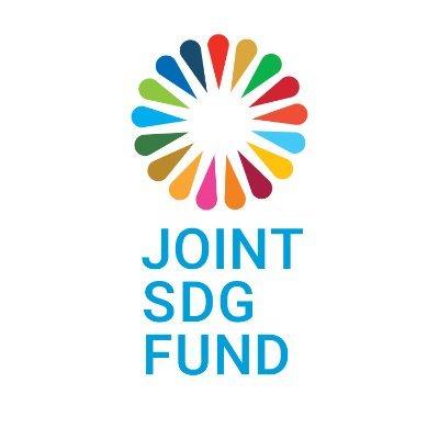 Joint SDG Fund