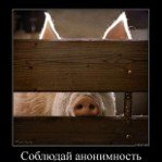 Aleksey8 (@Aleksey817)