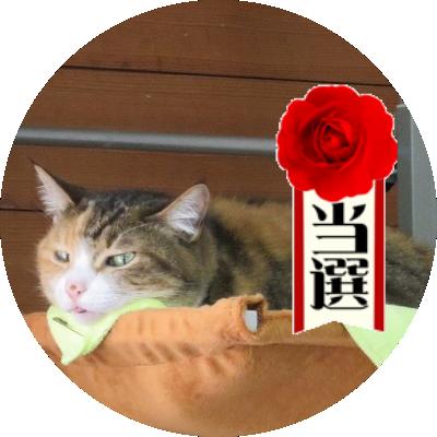 倉本かづき Kuramoto Kazuki Twitter