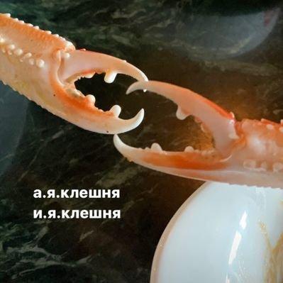 Полуомар Клешневская (@Kleshnevskaya)