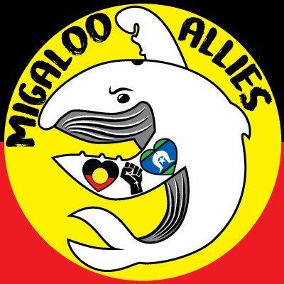 @MigalooAllies Profile picture
