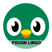 Pidgin Lingo🇳🇬