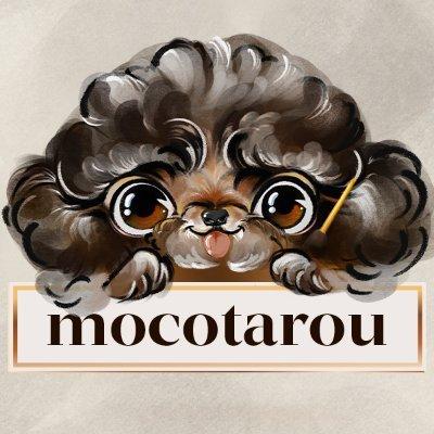 モコタロウ/mocotarou