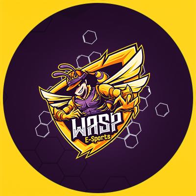 WASP Esports
