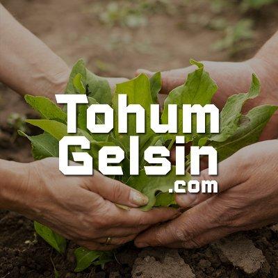 TohumGelsin.com