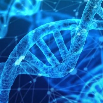 DNA & RNA research
