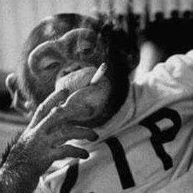 RealJesusChrysler aka Captain Clorox