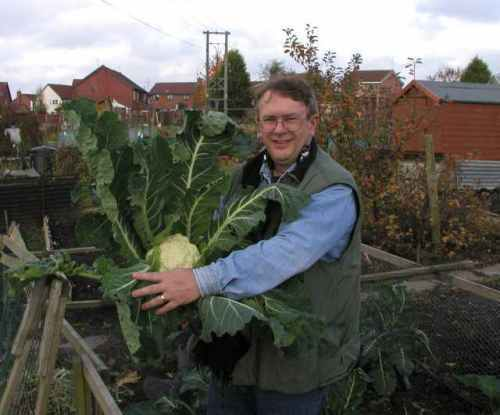 allotmentjohn