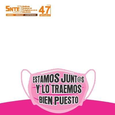 Sección 47