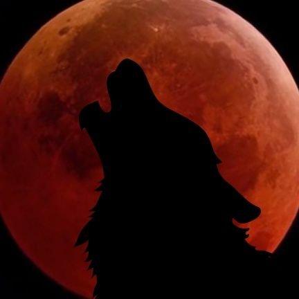 Wolf Moon Texas