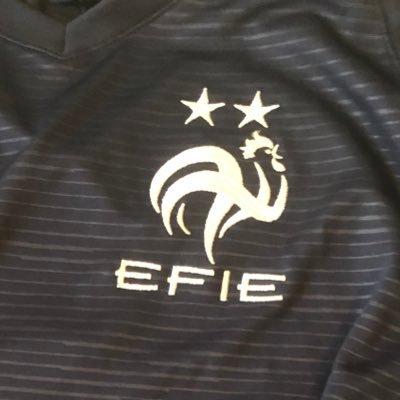Equipe de France des institutions Européennes EFIE