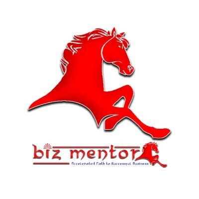 Biz Mentor