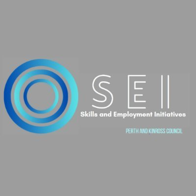 Skills and Employment Initiatives