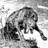 armourwolf