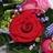 Floral Workshops