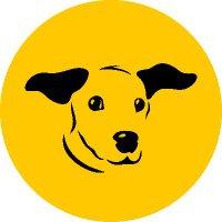 Dogs Trust 💛🐶 ( @DogsTrust ) Twitter Profile