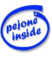 www.pejone.it