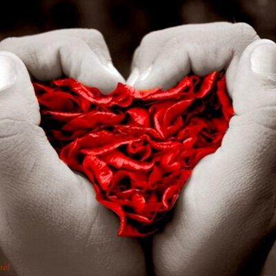 Frases De Amor On Twitter Felizdomingo