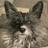 @Zekeys_Mom Profile picture