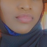 #SecureNorth🇳🇬 (@mubbywakili )