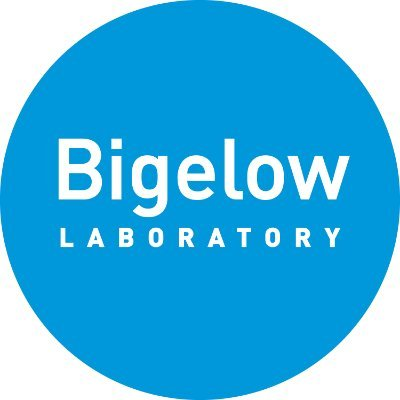bigelow.org