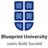 Blueprint University