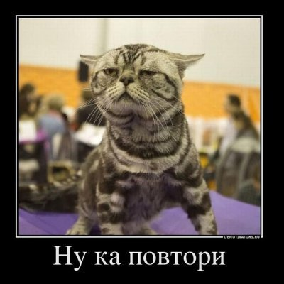 Смирнов Юрий (@Mogolorda)