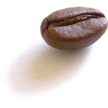 Bean 400x400