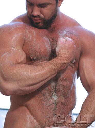 Gay aubagne gaybear profil