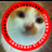 @PuttaTweets Profile picture
